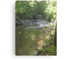 Prince William National Forest 10 Canvas Print