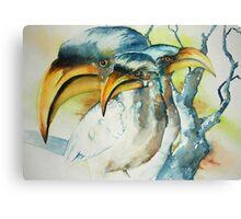 Hornbill trio Canvas Print