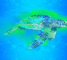 Swimming Sea Turtle by BailoutIsland