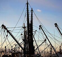 Fishing  Masts  by John  Kapusta