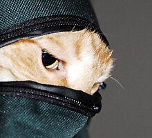 Ninja Cat by David Lee Thompson