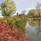 Penticton Japanese Garden  by Judy Grant