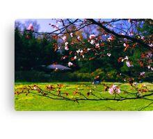 Sakura (2) Canvas Print