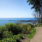 Gardens Overview - Lyme Regis by Susie Peek