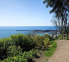 Gardens Overview - Lyme Regis by Susie Peek