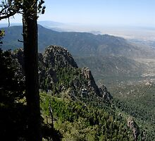 Sandia Mountains New Mexico by David Lee Thompson