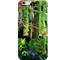 Sunken Gardens Trumpet Flower Fantasy iPhone Case/Skin