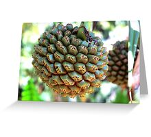 Nature's Disco Ball - Hala Greeting Card