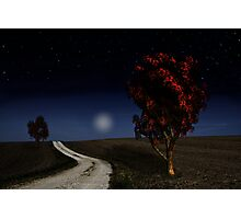 Night Sky in the Midwest  Photographic Print