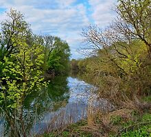 Spring at Tinicum  by Lanis Rossi