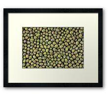 Mung Beans Framed Print