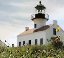 Historic Lighthouse by Melinda Anderson