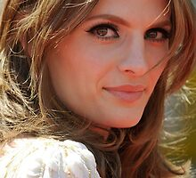 STANA KATIC PHONE CASES AND MORE! by itsbellsworld