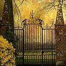 Magic Gate by Svetlana Sewell