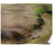 Prairie Wind Poster
