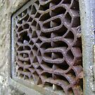 rust grille 1 by armadillozenith