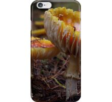 Upswept iPhone Case/Skin