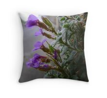 wall flowers 1 Throw Pillow