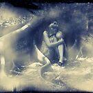 Shelter Me by Tara Paulovits