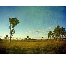Australiana II Photographic Print