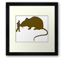 Pet huge rat  Framed Print