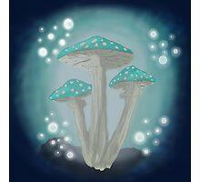 Cave Mushroom Photographic Print