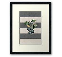 botanical stripes - plums Framed Print