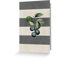 botanical stripes - plums Greeting Card