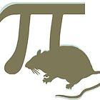 Pirate - anagram  pi rat  by SofiaYoushi