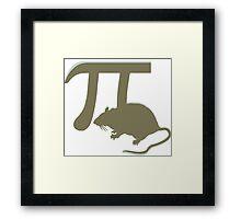 Pirate - anagram  pi rat  Framed Print