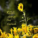 RISE Above the Crowd by lsmith77