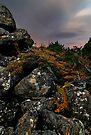 Mount Field Incomming by Robert Mullner