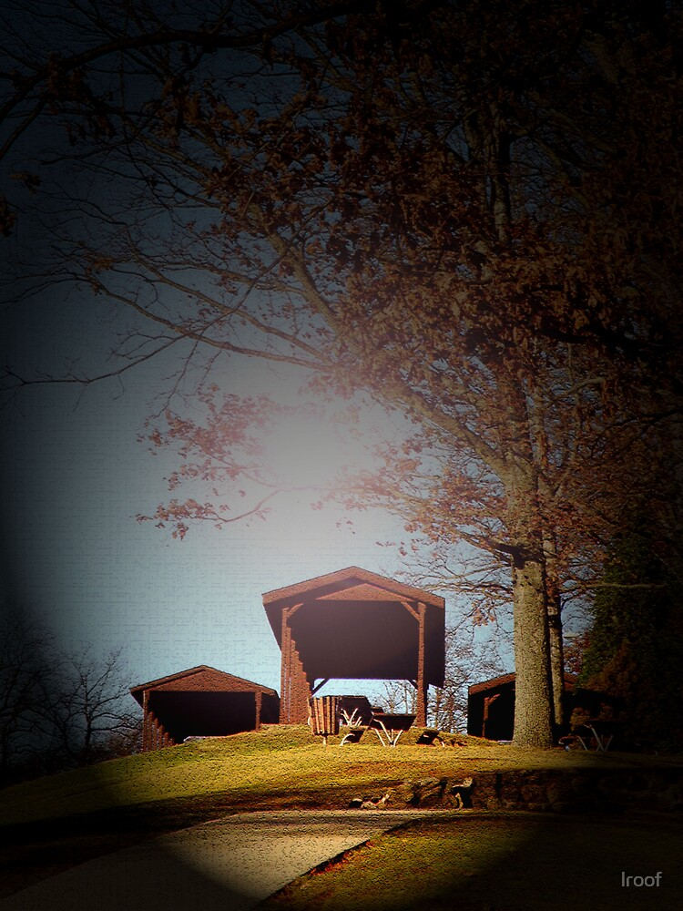 Picnic Shelter 2 by lroof