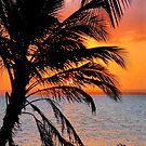 "SUNSET AND THE ""COCONUT PALM"" by Magriet Meintjes"