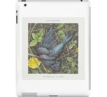 Caddywhompus - Feathering A Nest iPad Case/Skin