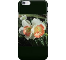 Twin Daffodils ~ iPhone Case/Skin
