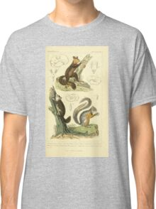 The Animal Kingdom by Georges Cuvier, PA Latreille, and Henry McMurtrie 1834 601 - Mammalia Mammals Classic T-Shirt