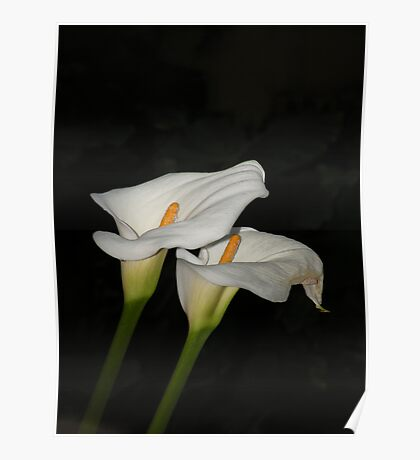 Lillies Poster