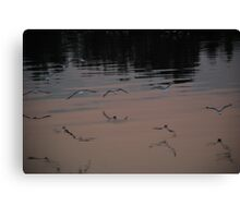 Seagulls over Manning Canvas Print