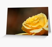 Warm Glow Greeting Card