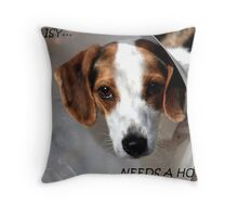 Daisy Needs A Home Throw Pillow