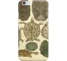 The Animal Kingdom by Georges Cuvier, PA Latreille, and Henry McMurtrie 1834  005 - Reptilia Reptiles iPhone Case/Skin