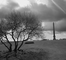 Cornwall: The Moody Monument by Rob Parsons