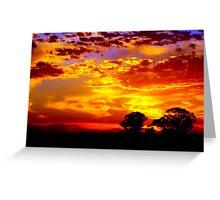 Golden sunset over the golden plains Greeting Card