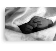 Baby Feet Wrapped in Blanket B&W Canvas Print