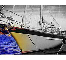 Head on Sail Photographic Print