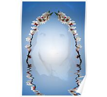 Beautiful woman and cherry blossom reflection Poster