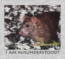 I am misunderstood? by Jon Lees