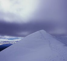 Feathertop summit by William Murray