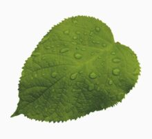 Green Leaf with Rain Kids Tee